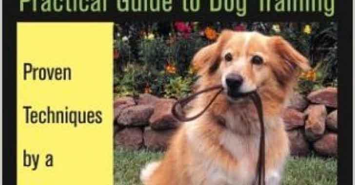 Köpek Eğitimi ABC PRAG